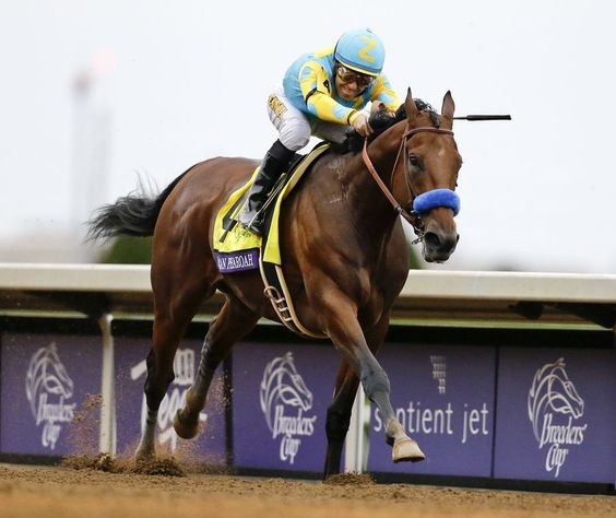 Superhorse!!!  No trick and all treat as American Pharoah, with Victor Espinoza up, wins the Breeders' Cup Classic at Keeneland race track Saturday, Oct. 31, 2015, in Lexington, Kentucky in his racing finale. (AP Photo/Mark Humphrey)