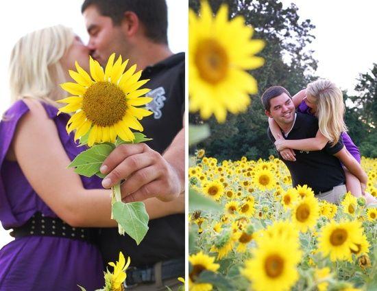 Sunflower | http://flowerfieldsgallery.blogspot.com