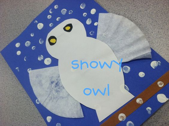 snow owl -  A snow owl is nocturnal and creating a snowy white owl can cool off a hot summer day! :)