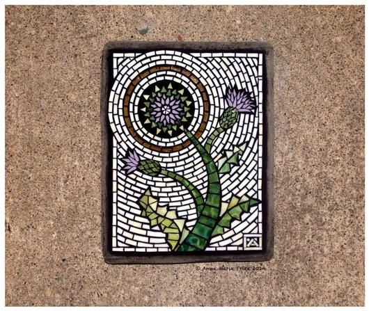 Thistle - Delphi Artist Gallery by Anne Marie Price