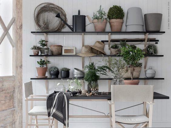 Växthus För Balkong : Snart är det dags att flytta ut i trädgården eller på balkongen
