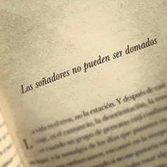 Los soñadores no pueden ser domados #soñadores #vivetussueños #dreamer