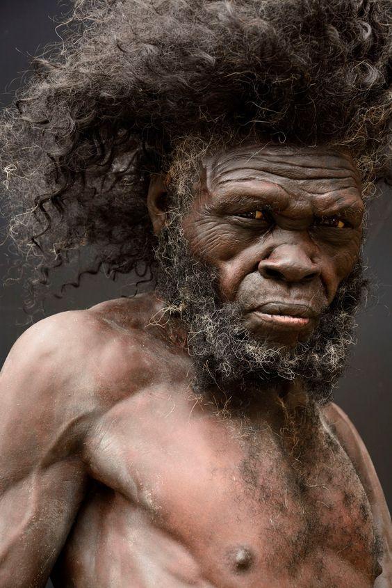 Caveman Vs Modern Man : Mød homo sapiens det første anatomisk moderne menneske