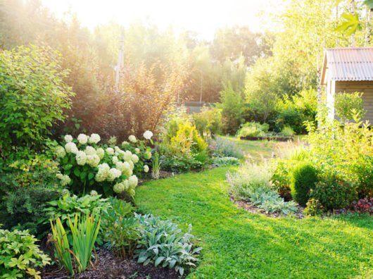 Schmalen Garten Breiter Wirken Lassen 5 Leicht Umzusetzende Tipps Schmaler Garten Gartengestaltung Garten Planen