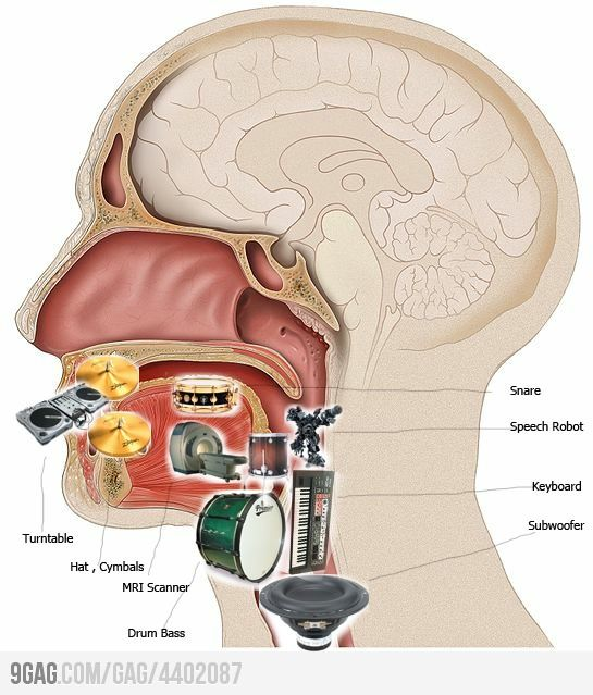 Mouth Anatomy Of Beatboxer.. MRI-scanner?