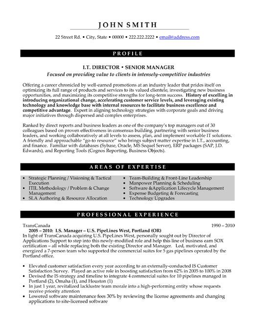 IT Director Resumes - Google Search Work Pinterest - sample resume for manager