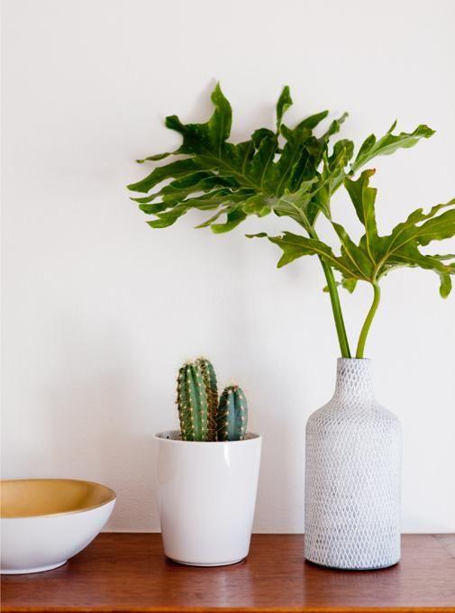 Pot plant decor. #LoveNature