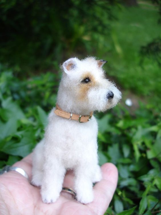 Fake Toy Dogs : Fox terriers real dog and on pinterest
