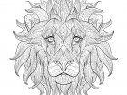 Display image coloriage-adulte-tete-lion-3