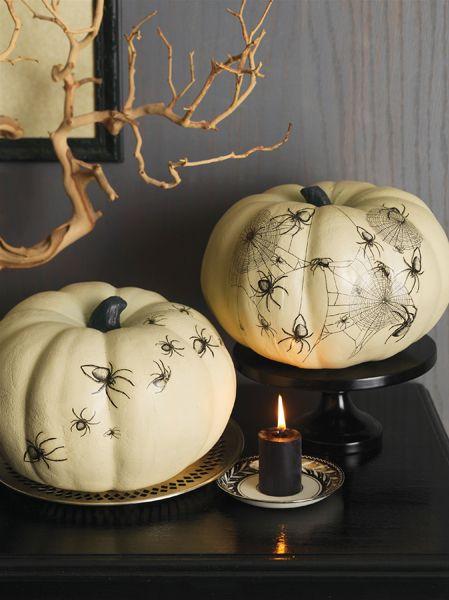 Pumpkin transfers