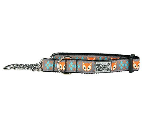 Rc Pet Products 3 4 Training Martingale Dog Collar Medium Fox