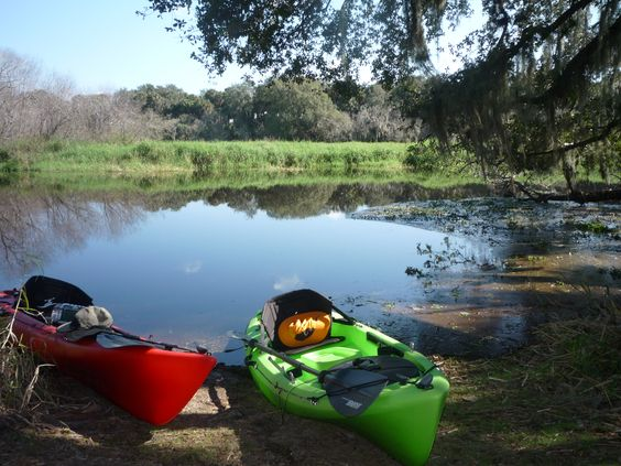 Myakka River State Park is a good place to start...