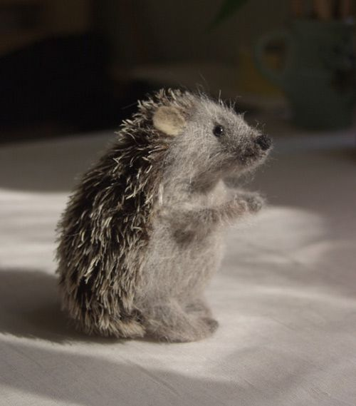Porcupine!! aww!! this will make you want one.. aside from the prickliness!!: