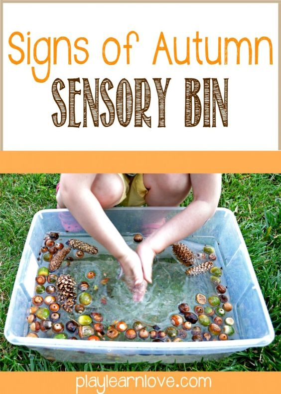 A Nature Walk and Autumn Sensory Bin [Contributed by Play Learn Love] - #kids #sensoryplay #autumn