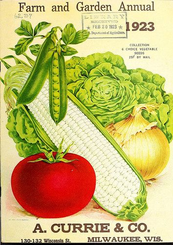 vegetable seed packet: