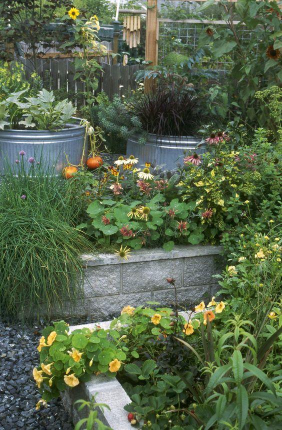 Raised Bed Garden Design: