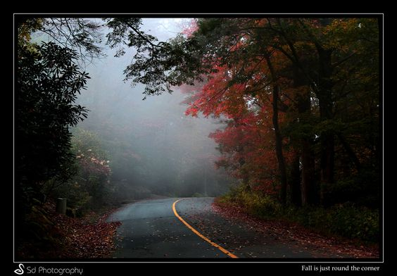 Fall is just round the corner by Sd  Photography on 500px