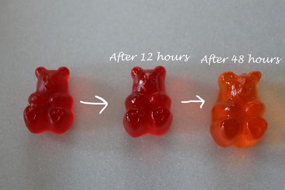 How to Make Drunken Gummi Bears.... perfect for an adult Halloween party.