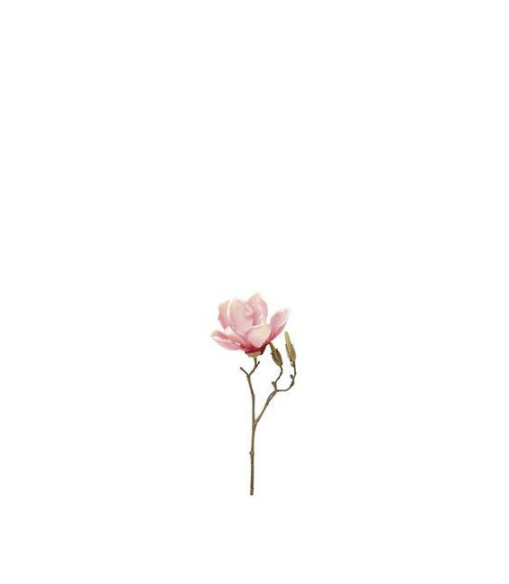 Der Frühling kann kommen! Mit diesen formschönen Magnolienzweigen, die in drei Größen und zwei Farben erhältlich sind, können Sie alles dekorieren, vom kleinen Tischglas bis zur hohen Bodenvase. Ein toller Frühlingsbote. Zweige mit Textilblütennaturnahe Opticin verschiedenen Ausführungen erhältlichGröße (B/H/T): 150/300/100mm