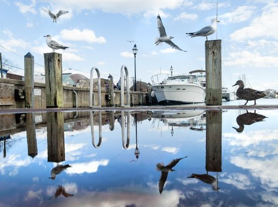 Annapolis City Dock rebuilding project wins $1.5M grant.