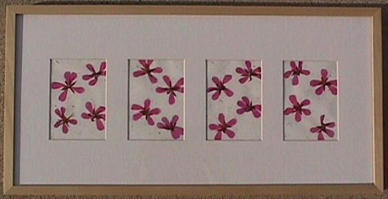 2001 - Modern Pink.  Dried flowers.: Pink Dried, My Art, Modern Pink, 2001 Modern, Dried Flowers