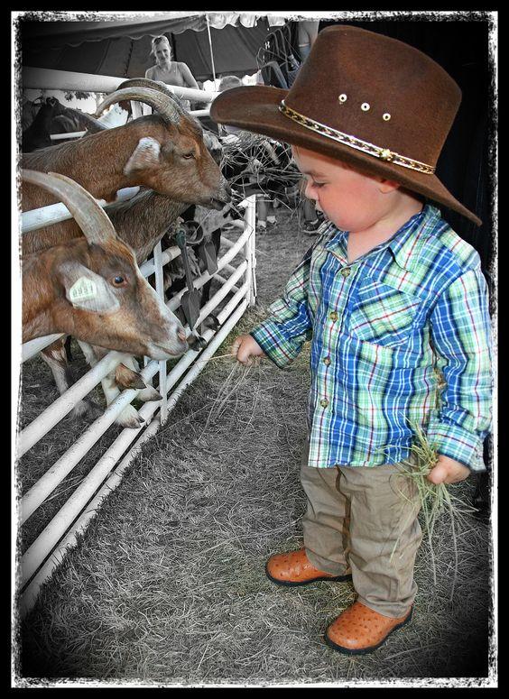 Feeding the goats at The Nebraska State fair.