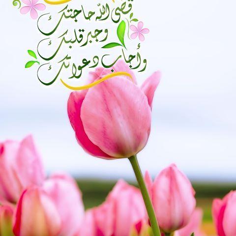 لك ل م ن ي قرأ ق ضى الله حاجتك وج بر قلبك وأجاب دعواتك ㅤㅤㅤㅤㅤㅤㅤㅤㅤㅤㅤㅤㅤㅤㅤㅤㅤㅤㅤㅤㅤ مساؤكم إجابة لدعو Morning Greeting Islamic Wallpaper Islamic Pictures