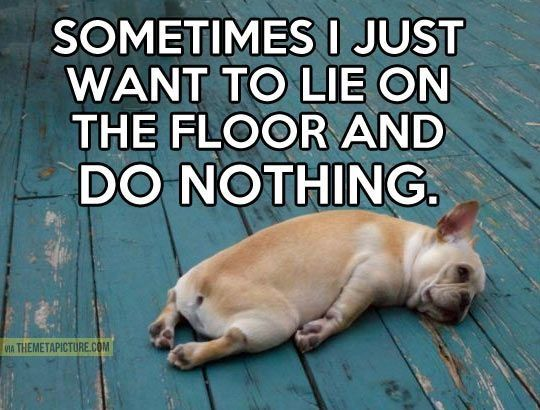 Funny Quotes About Nothing: Funny, Quotes Quotes And Lol Funny On Pinterest
