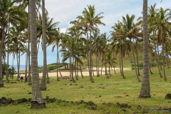 Ahu Nau Nau à Playa de Awaken, Ile de Pâques - Chili