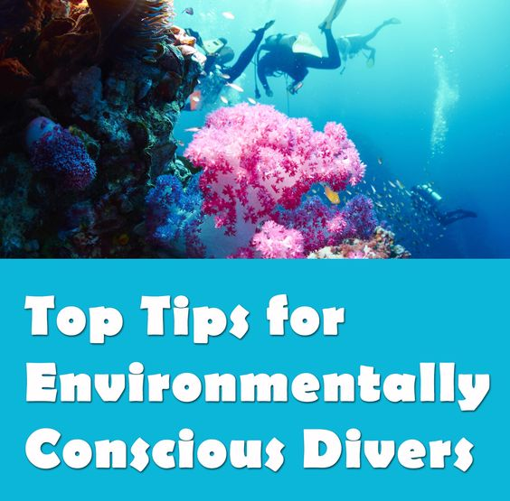 Great tips from Scuba Diver Life as always!