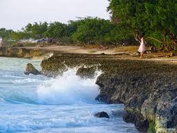 Resultado de imagem para praias da costa verde rio de janeiro
