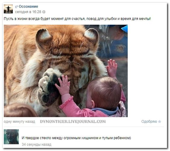 Сделал дело, делай другое дело.. Обсуждение на LiveInternet - Российский Сервис Онлайн-Дневников
