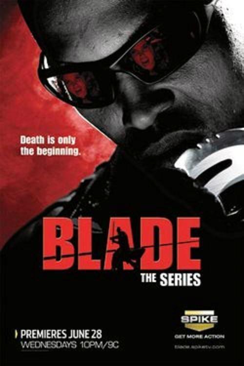 Blade House Of Chthon Dvd Blade The Series Book Tv Superhero Tv Shows