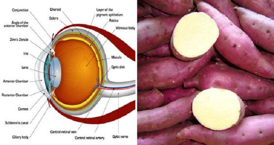 How Sweet Potatoes Can Help Prevent Blindness and Help You Lose Weight