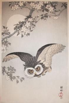 Shoson  Title:Owl, Cherry Blossom and Moon