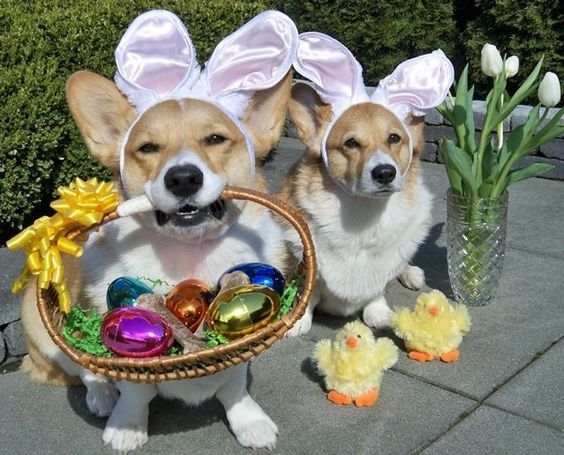 Getting ready for Easter!