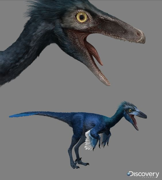 Troodon Dinosaur Revolution by ~Swordlord3d on deviantART
