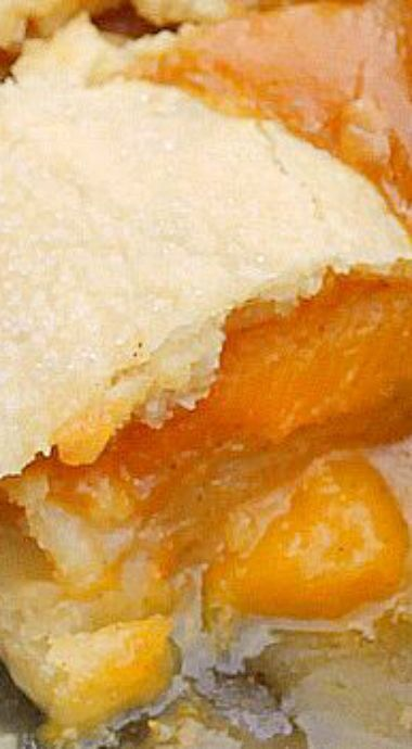 Double Crust Peach Cobbler ~ The peach filling is delicious with a hint of lemon, cinnamon and vanilla. The all butter crust is tender and melt in your mouth good... DELICIOUS!!