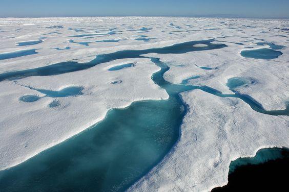 1248 Kilometer zum Nordpol