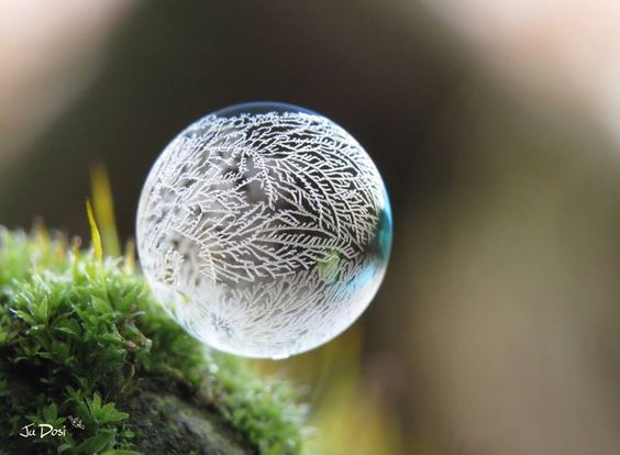 #gefrorene seifenblasen