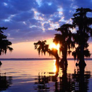 Nothing like a Louisiana sunset on the bayou...