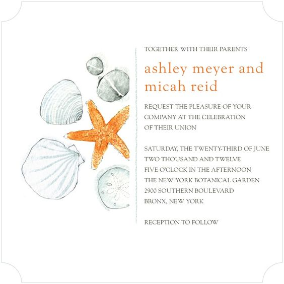 Seashell Sketches - Signature White Textured Wedding Invitations in Persimmon | Petite Alma