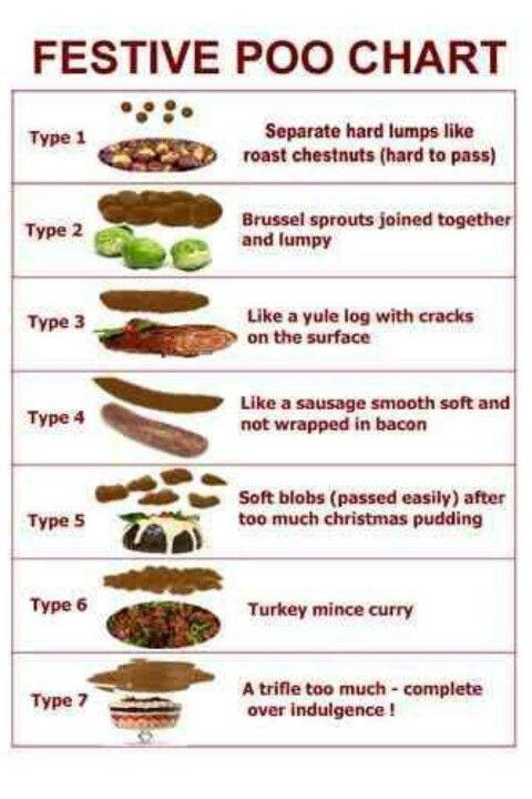 Christmas Bristol Stool Chart Nursey Humour Festive