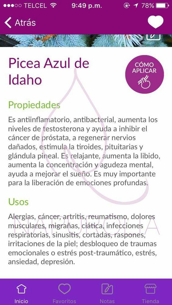 cáncer de próstata y tiroides