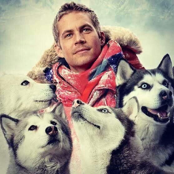 Paul Walker with Huskies - RIP - we miss you!