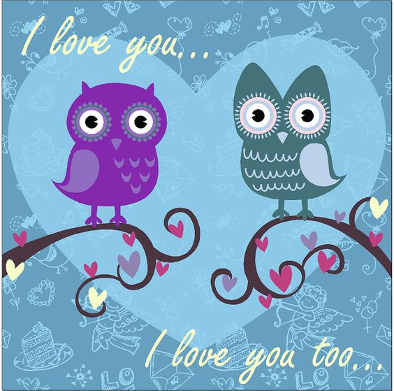 I love you owels birds Animals & nature vinyl decals for home, office, or auto.  http://www.etsy.com/shop/AngelBabyVinyl?ref=search_shop_redirect
