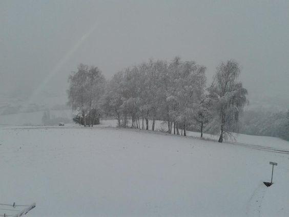 RE: 24.01.2014 - Aktuelle Wettermeldungen - 4