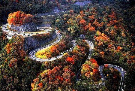 paisagem, estrada incrivel