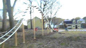 Backyard Roller Coaster ; gif