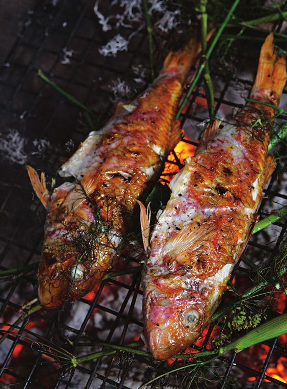 Recipes from The River Cottage Fish Book by Hugh Fearnley ...